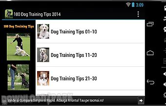 100 dog training tips 2014