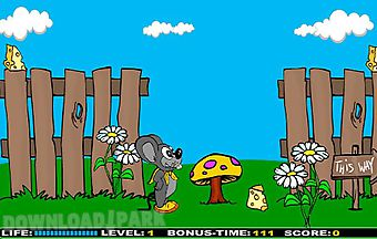 Crazy mouse games