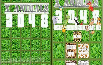 X animals - 2048 new transformer..