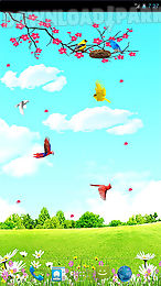 sky birds live wallpaper free