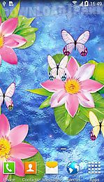 butterflies by amax lwps