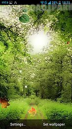 forest by pro live wallpapers