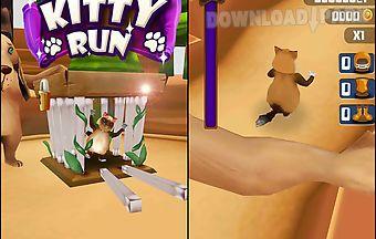 Kitty run: crazy cats