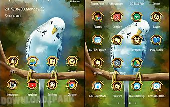 Cute birds launcher