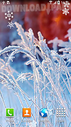 The Description Of Frozen Flowers Winter On Screen Your Smartphone Or Tablet Live Wallpapers Have Glass Effect And Are Animated With