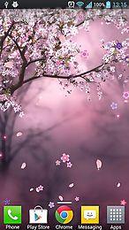 fantasy sakura