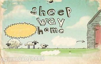 Sheep way home