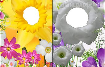 3d flower photo frames
