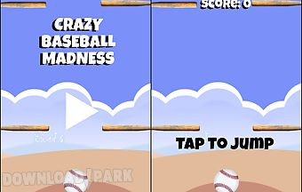 Crazy baseball madness