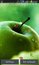 apple by happy