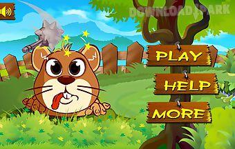 Hit mouse-punch rat
