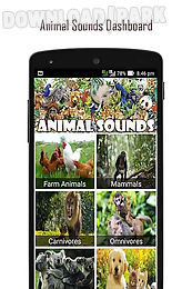 120 animal sounds