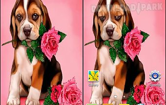 Puppy rose live wallpaper