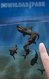 shark fingers 3d aquarium free