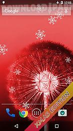 dandelion live wallpaper