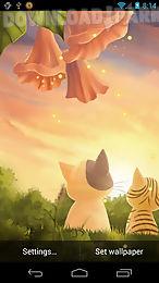 kitten sunset wallpaper free