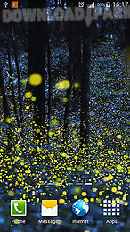 fireflies by phoenix live wallpapers