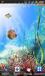acquarium live wallpaper