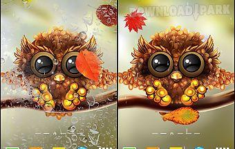 Autumn little owl wallpaper