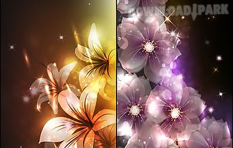 Glowing flowers by creative fact..