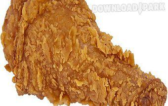 American food chicken drumstick