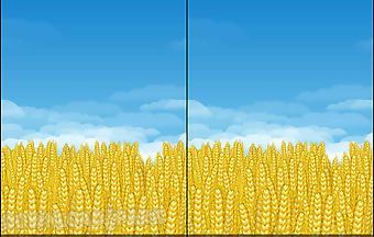 Wheat field 3d live wallpaper
