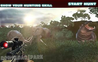 Hunter kills the deer