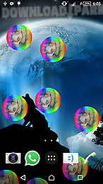 wolf animated