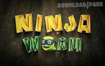 Ninja worm