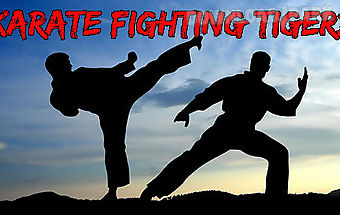 Karate fighting tiger 3d 2
