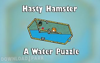 Hasty hamster and the sunken pyr..