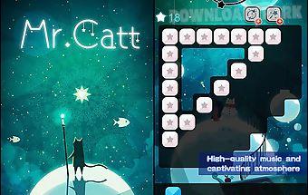 Mr. catt