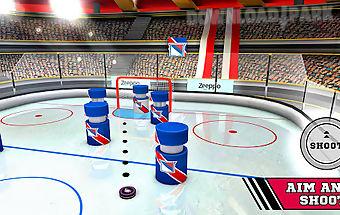Pin hockey - ice arena