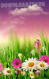 spring meadow live wallpaper