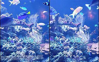 Aquarium hd 2