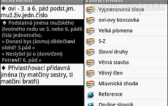 Czech grammar basic rules