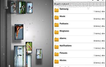 Flv video player/browser