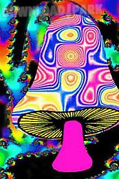 psychedelic mushroom lwp