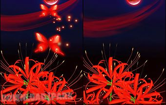 Butterfly and flower 3d