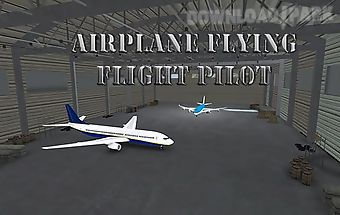 Airplane flying flight pilot
