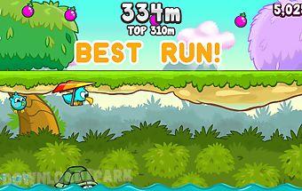 Kiwi run