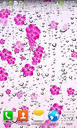 rainy day by live wallpapers free