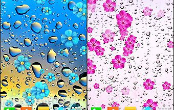 Rainy day by live wallpapers fre..