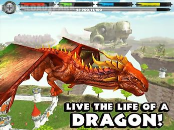 world of dragons simulator customary