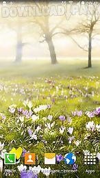 spring landscapes
