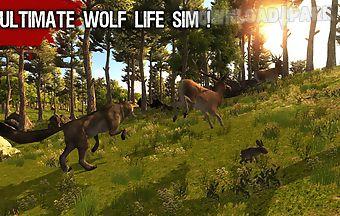 Wild life - wolf