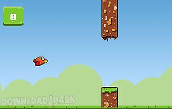 Cool flying bird