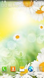 daisies by live wallpapers