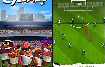Angry birds: goal!