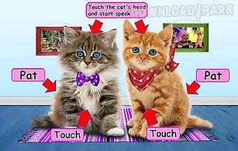 Funny talking cats